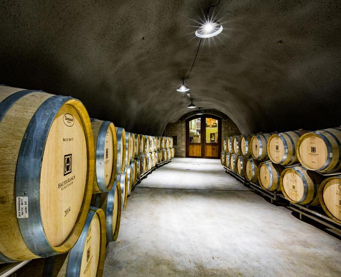 What's a wine cave? The 5 best underground experiences on the Central Coast